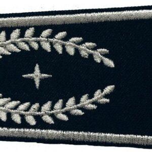 Schulterklappen Stellvertretender Leiter der Feuerwehr ( NRW )